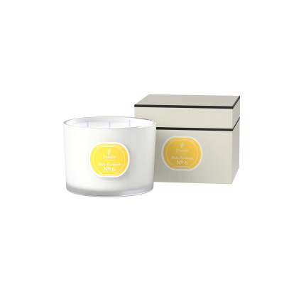 Ex-No6 Lime & Citrus 3 Wick Candle