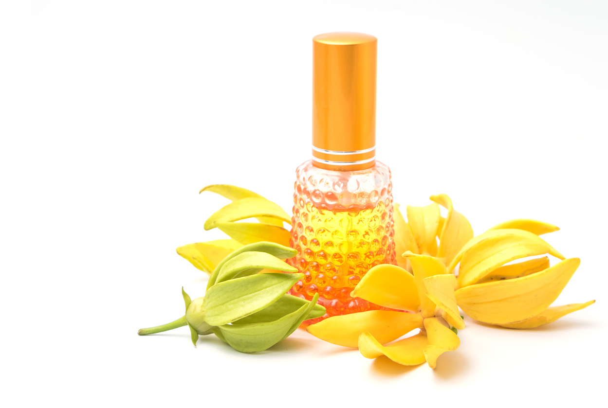 Ylang Ylang essential oil in a small glass bottle beside flowers