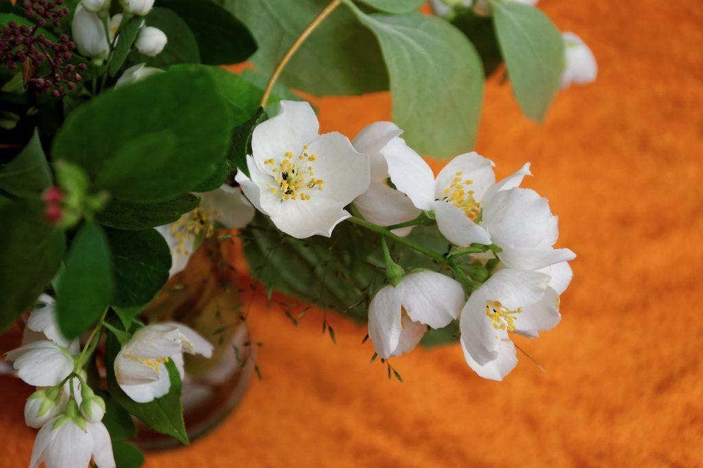 White Jasmine Candle