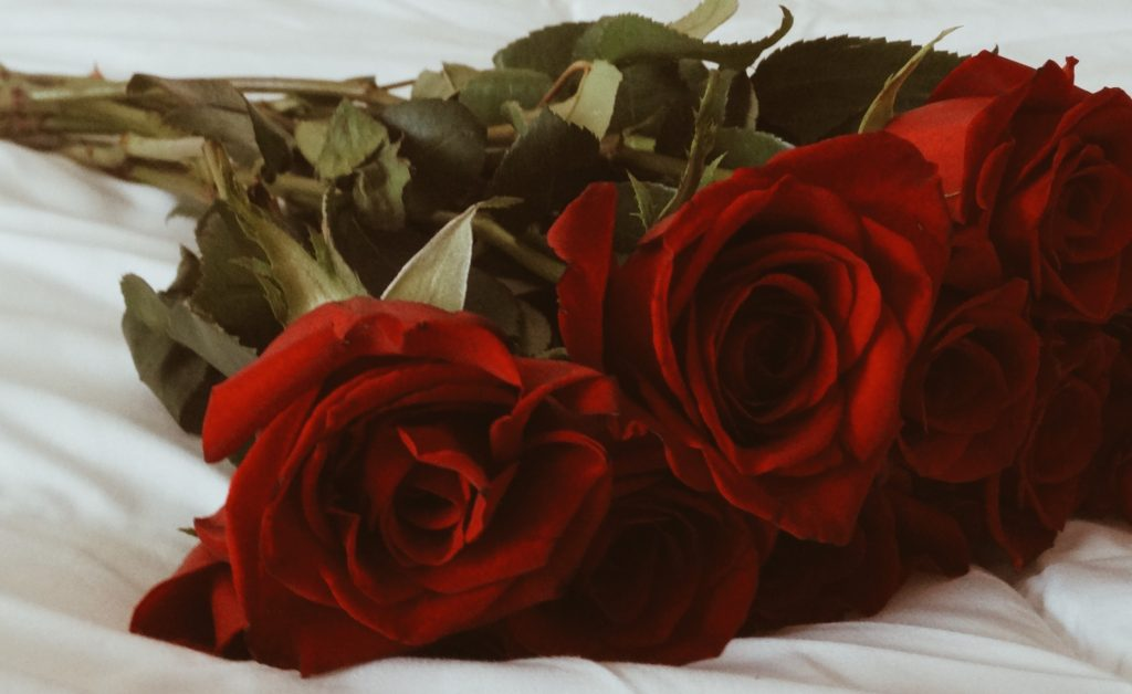 dark roses on bed